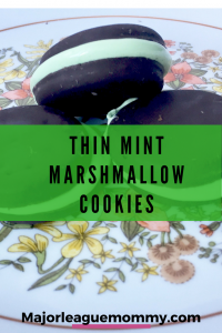 Thin Mint Marshmallow Cookies Recipe