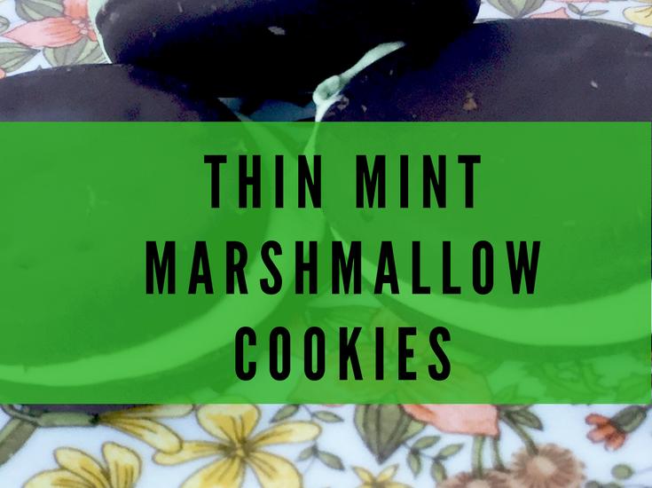 Thin Mint Marshmallow Cookies Recipe