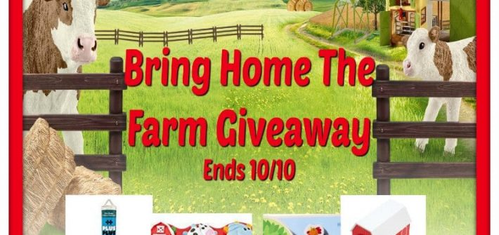 Here is a great opportunity to get a head start on your holiday gift shopping. Enter to win in the Bring Home The Farm Giveaway. Good luck!