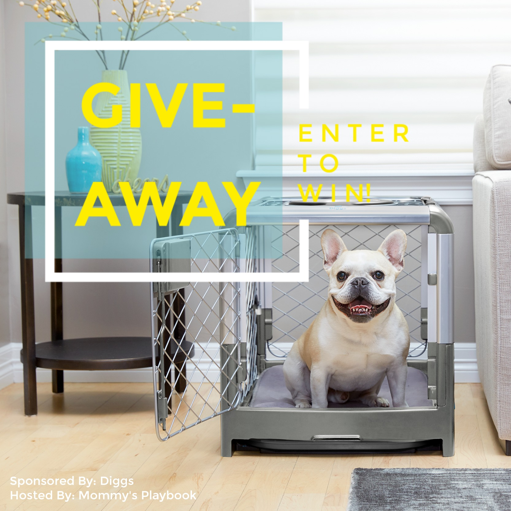 This one is for all my pet-owners out there. Enter to win in the Diggs Revol Crate Giveaway before it's too late. Good luck!