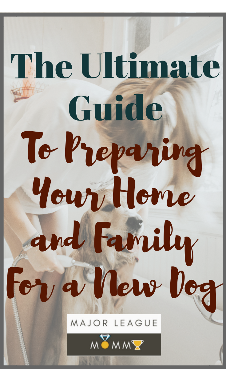 The Ultimate guide To Preparing Your Home and Family For a New Dog