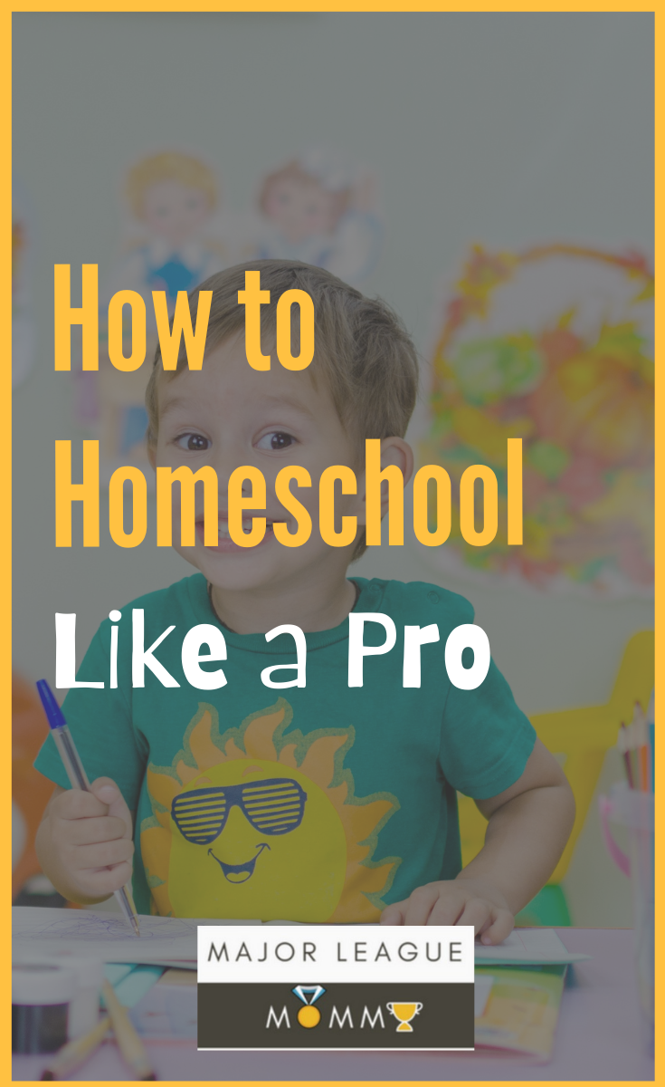 Use these tips to Homeschool Like a Pro